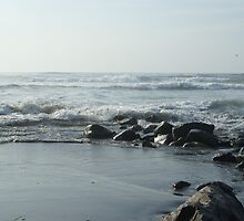 Tide Goes Out Also by Loisb
