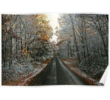 SNOWY AUTUMN LEAVES (GREENLAND ROAD) Poster