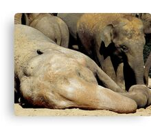 I AM BORING  AND SHE IS LAZY Canvas Print