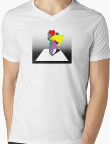 Anamorphic South America Mens V-Neck T-Shirt