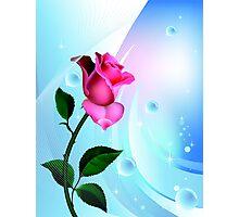 Sea Rose Photographic Print