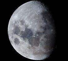 January Gibbous Moon by Teale Britstra