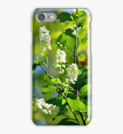 Chokecherry Blossoms iPhone Case/Skin