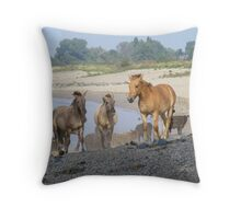 A stroll  on the beach ..... Throw Pillow