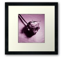 Whos wearing rose tinted glasses Framed Print