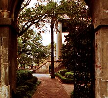 Randolph Hall Gate View by Benjamin Padgett