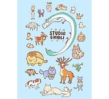 Animals of Studio Ghibli V2 Photographic Print