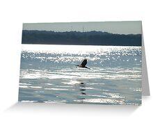 Blue Heron on Onondaga Lake Greeting Card