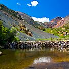 Beaver Dam, Lundy Canyon by Justin Mair