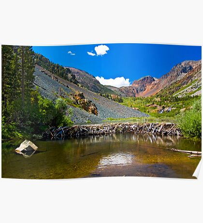 Beaver Dam, Lundy Canyon Poster