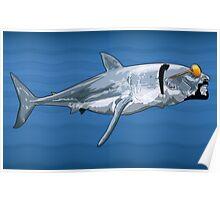 Sharkizzle Poster