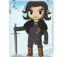Link Does Jon Snow Cosplay iPad Case/Skin