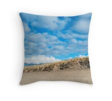 Ammophila arenaria, Marram grass growing in the dunes on the Dutch North Sea Coast between Ijmuiden and Zandvoort. Throw Pillow