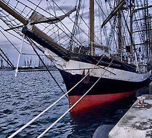 PELICAN of LONDON (Vessels visit Portugal serie) by Carlos Teófilo