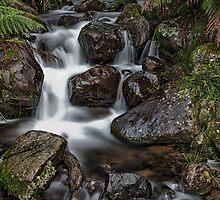Cement Creek by Dean Osborne