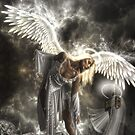 When Angels Fall  (Limited Edition) by Martin Muir