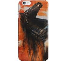 Gallop at Sunset iPhone Case/Skin