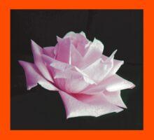 Pink Rose  Kids Tee