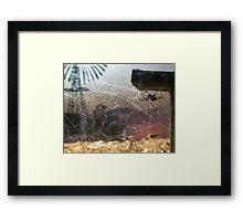 Redback Outback Framed Print