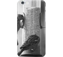 Sparrows eating iPhone Case/Skin