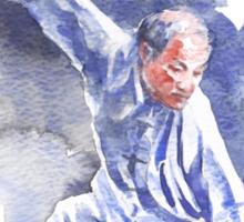 Yang Tai Chi Sticker