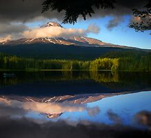 Trillium Reflection by Jonathan Cohen