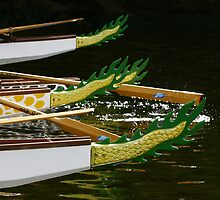 Dragon Boats #2 by Noel Elliot