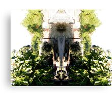 Northcote Community Gardens Fantasy 1 (the old lady of the garden) Canvas Print
