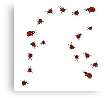 Little Red Bug Canvas Print