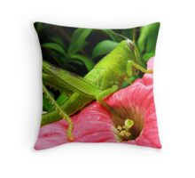 Grasshopper Throw Pillow