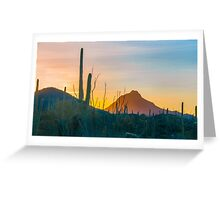 Desert Colors Greeting Card