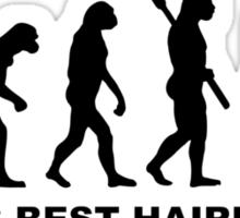 Evolution World's Best Hairdresser Sticker