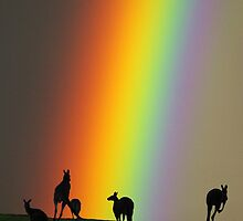 Kangaroos and Rainbow at Kangaroo Ground, Yarra Valley. by Ern Mainka