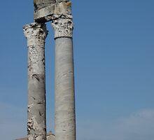 Columns of Roman Theatre, Arles by pluspixels