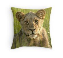 Pride Successor  Throw Pillow