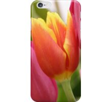 Colourful Tulips iPhone Case/Skin