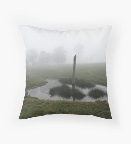 Misty Morn, Kangaroo Valley, NSW, Australia.  Throw Pillow