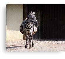 Longitudinally striped makes slim  ;-) Canvas Print