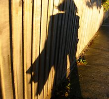 strange shades by jayview