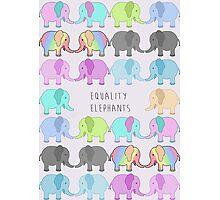 Equality elephants Photographic Print