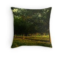 Last Light In The Trees Throw Pillow