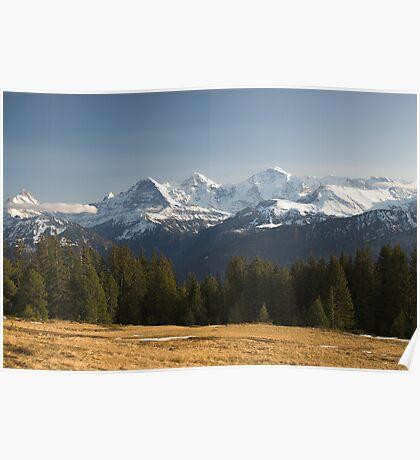 View from Niederhorn Poster