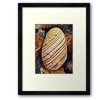 The Darwin Rock  Framed Print