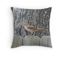 Wait for it .... Throw Pillow