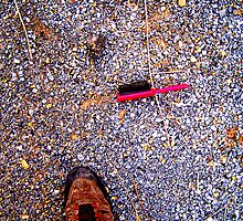 pebbles twigs brush and shoe by mychaelalchemy
