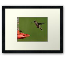 Competition Framed Print