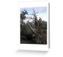 We All Need Roots Greeting Card