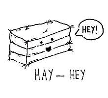 Hay - Hey by lovefromdani
