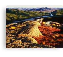 Hilltop Goats Scenic Panorama Canvas Print
