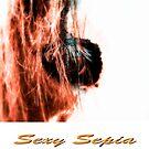 Sexy Sepia by Craig Shillington